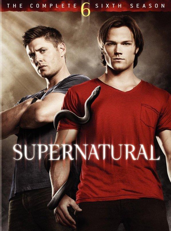 Image result for supernatural season 6 poster