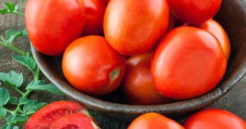 cesta de tomate maduros
