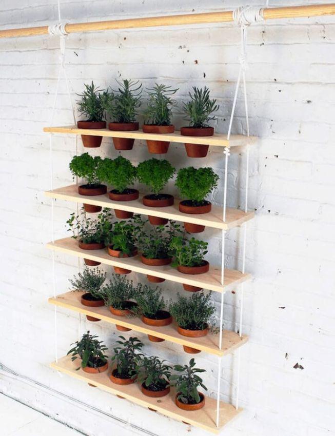 ervas aromaticas cozinha