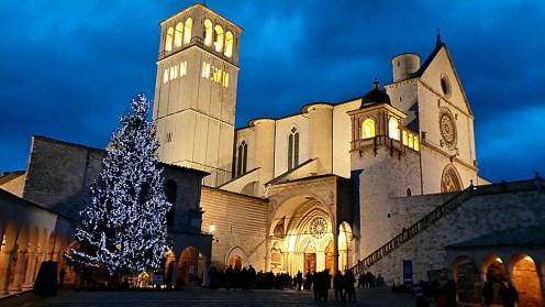 Basilica di San Francesco in Assisi gennaio 2014 con albero di Natale (1)
