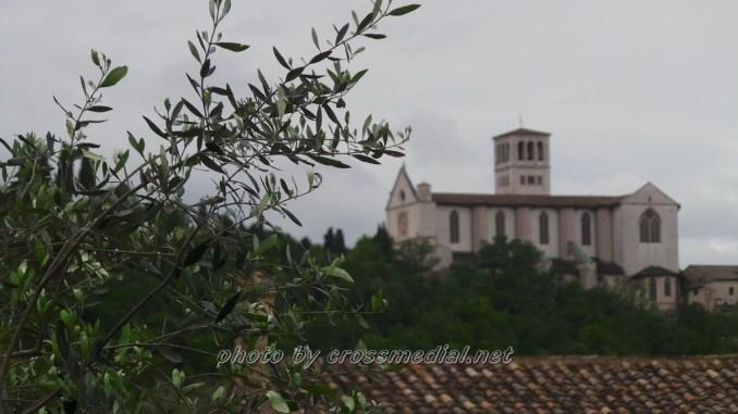 Al Bosco di San Francesco, il fantastico mondo delle api