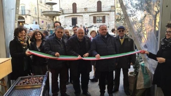Degustare olio nuovo e andar per castelli, questo è UNTO ad Assisi