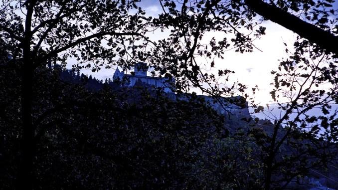 Il Giorno Della Civetta, Bosco di San Francesco, Assisi