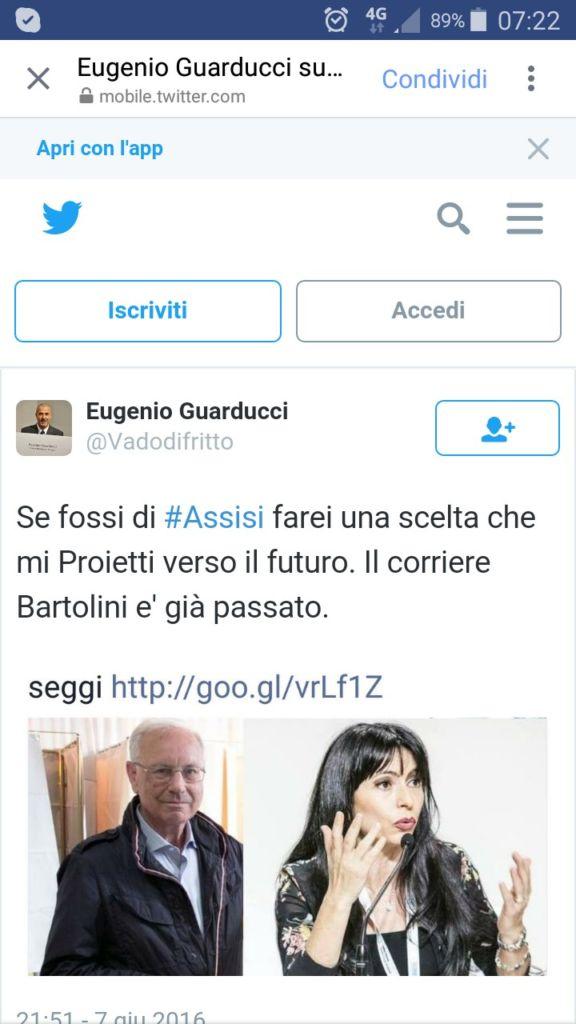 tweet-guarducci