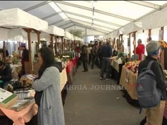 Unto alla scoperta della magia dell'olio ad Assisi in piazza del Comune