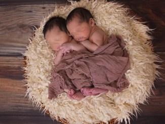 Fertility Room Assisi, chi si ricorderà di spedire il certificato? Nessuno?