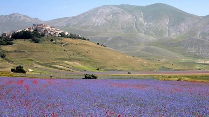 Terremoto, Assisi per la grande bellezza della Valnerina