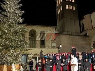 Accensione albero di Natale alla Basilica di San Francesco d'Assisi
