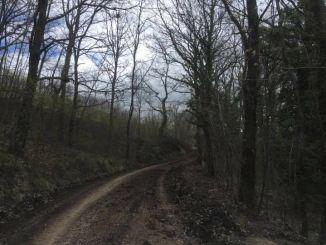 Viabilità, lavori in corso sulle strade delle frazioni e di montagna