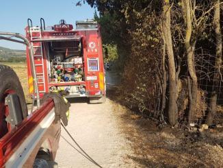 Incendio sospetto nelle campagne tra Bastia e Petrignano di Assisi