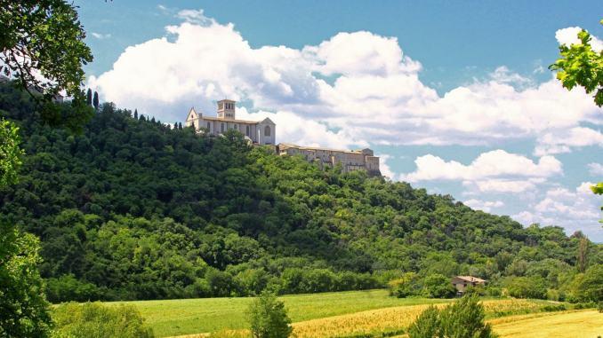 Assisi, il beato e il boom di malati, critiche e consensi