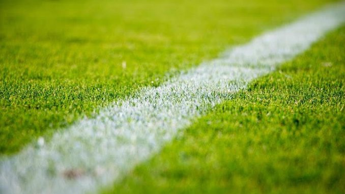 """Viole Calcio, """"Necessario chiudere il campo sportivo"""""""