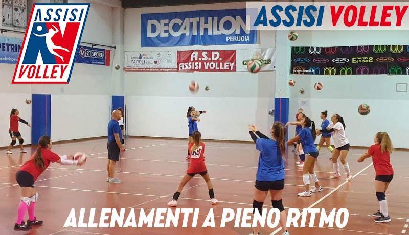 Allenamenti a pieno ritmo per l'Assisi Volley