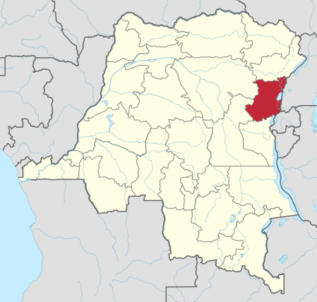Jihadist Militants Slaughter 20 Christians in Northeastern DRC