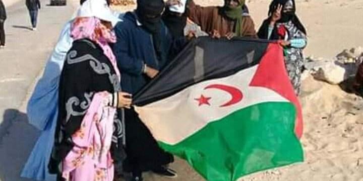 Communiqué de Presse – 44° Anniversaire de la Proclamation de la République Arabe Sahraouie Démocratique