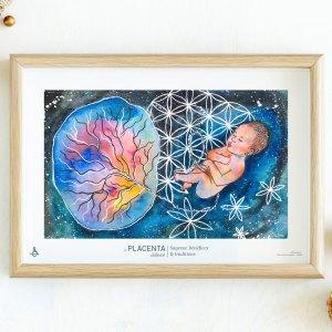 création de Salma sur le Placenta