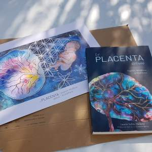 Lot du livre sur le placenta et le dessin