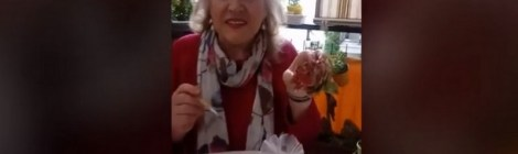 Video Banca del Tempo Bolzano - Rose con i cartoni delle uova