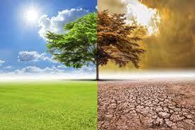Clima, la partita si gioca a livello globale