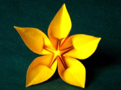 Fleur De Pantin Association Masi