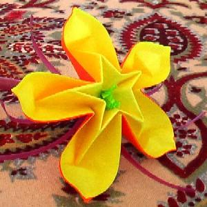 Video Fleur Coeur D Etoile Association Masi