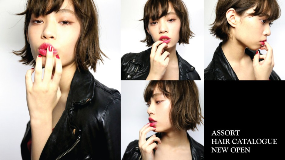 ASSORT HAIR CATALOGUE