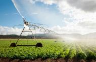 وزراء الزراعة في 15 دولة يقرّون خطة لتأمين الغذاء