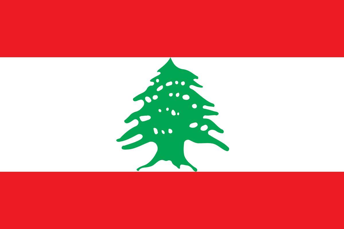 نحو قومية لبنانية جديدة