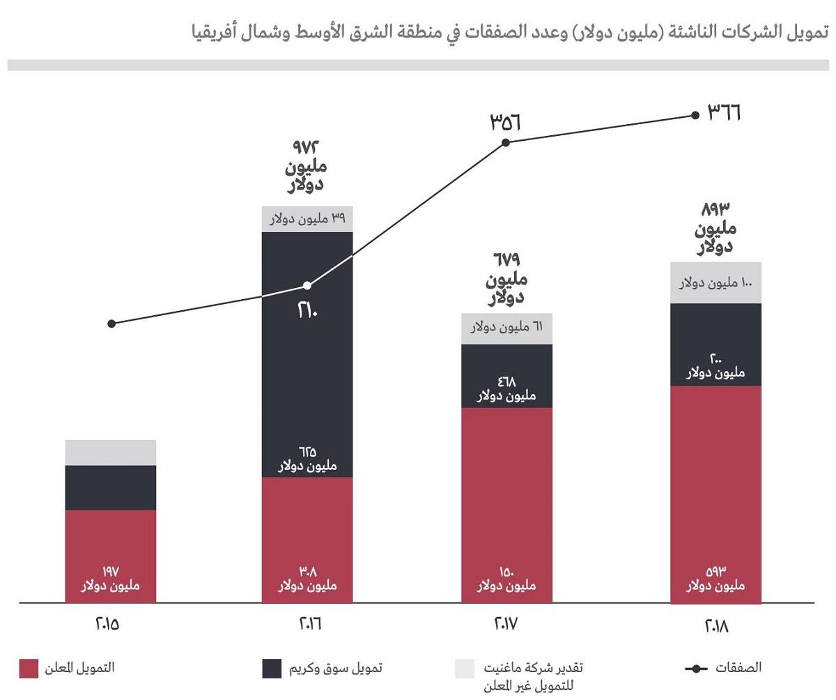 الملكية الخاصة وتمويل المشاريع في منطقة الشرق الأوسط وشمال إفريقيا: العودة إلى المستقبل