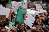 الإحتجاجاتُ في الجزائر توقّفت بسبب