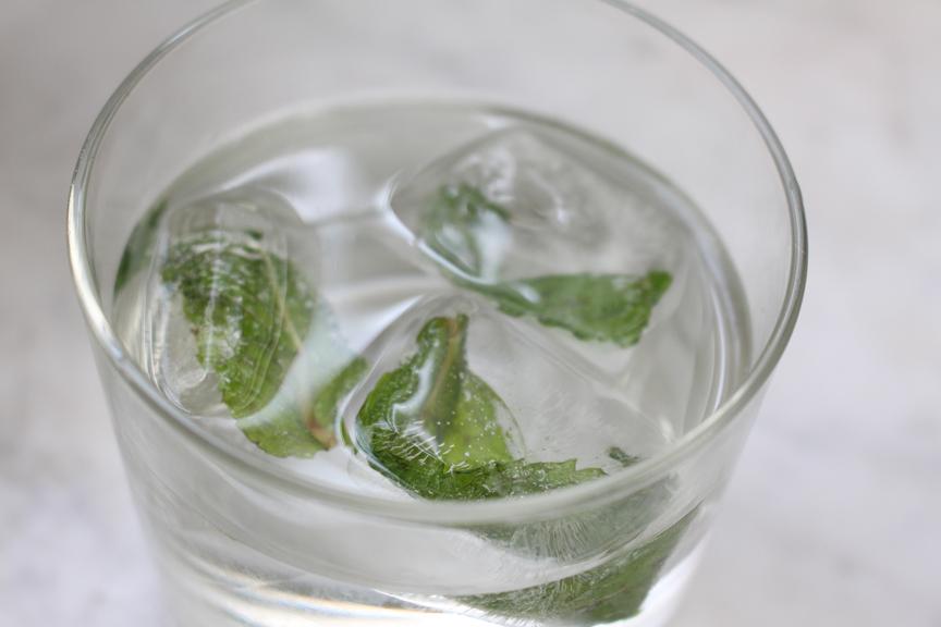 mint ice cubes cu