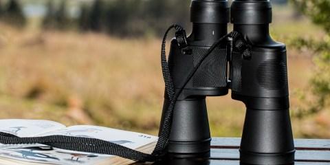 best hunting binoculars review