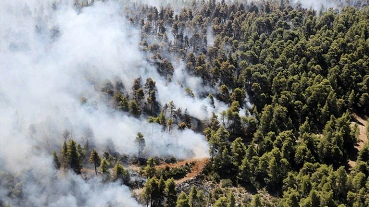Φωτιά στην Εύβοια: Προβληματίζουν οι αναζωπυρώσεις και οι εστίες σε δύσβατα σημεία