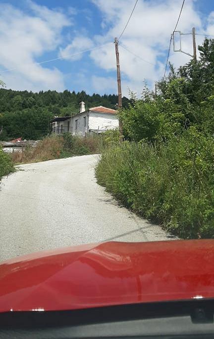 Λάρισα: «Έζωσαν» δρόμους και σπίτια τα αγριόχορτα στην Καλλιπεύκη - Κίνδυνος από φίδια, σαύρες και πυρκαγιές (Δείτε φωτογραφίες)