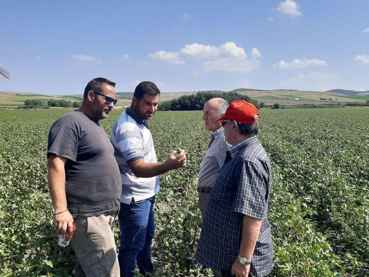 Άμεσες και δίκαιες αποζημιώσεις στους χαλαζόπληκτους αγρότες ζητά ο Δήμος Φαρσάλων
