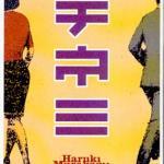 Vest for solen, syd for grensen av Haruki Murakami