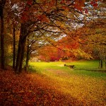 Ode to Autumn – John Keats