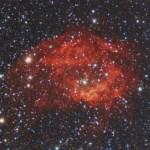Sh2-261 - Nebulosa di Lower