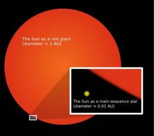 Comparación del tamaño actual del Sol y su posible tamaño como gigante roja.  Crédito: Wikimedia Commons/Oona Räisänen