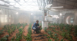 Imagen de la película Marte (The Martian) en la que Mark Watney intenta cultivar vegetales en el planeta rojo. Crédito: Twentieth Century Fox Film Corporation