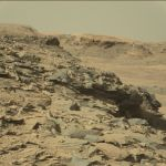 Un entomólogo asegura que hay vida en Marte