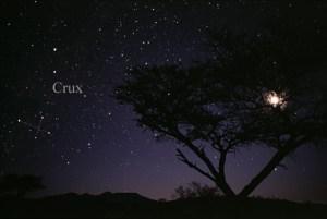 La Cruz del Sur. Crédito: Wikipedia Commons/Till Credner