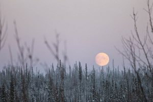 calendario astronómico de diciembre 2017