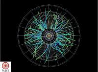 Een cascade van deeltjes na een botsing van een loodion en een proton, waargenomen met de ATLAS detector