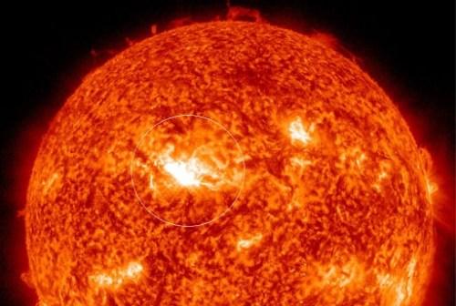 zonnevlam