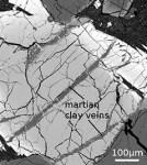 Marsmeteoriet bevat biologische bouwstenen