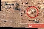 Ja hoor, er is weer wat vreemds op Mars ontdekt: de 'Mars Rat'