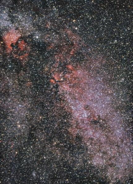 Zviježđe Labuda
