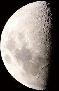Luna di 7 giorni