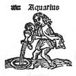 11aquarius